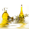 Extra virgin olive oils in bottle and jar isolated Royalty Free Stock Photo