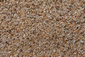 Extream close up to the sand of coral and shell flinders seaside that with view turns out be a processed by ocean it creates Stock Photo
