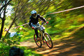 Extreme mountain bike competition almaty kazakstan august p rezaev n in action at sports event superiority of cycling club named a Royalty Free Stock Image