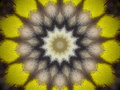 Extruded star mandala
