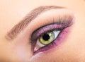 Eye close up makeup Royalty Free Stock Photo