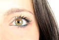 Eye a girl close up Stock Photography