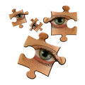 Eye jigsaws Royalty Free Stock Photos