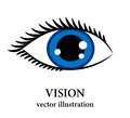 Eye logo sketch, isolated vector for ophthalmology