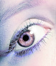 Eye macro shot Royalty Free Stock Photography