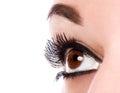 Eye make up Royalty Free Stock Photo