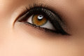 Eye makeup. Beautiful eyes retro style make-up. Holiday makeup d Royalty Free Stock Photo