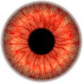 Eye map Stock Photography