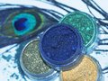 Eye shadows professional powder of bright colors and peacock feather Stock Photo