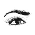 Eye vector pencil drawing illustration element isolated Royalty Free Stock Photo