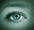Eye viewing digital information. Royalty Free Stock Photo