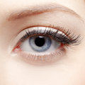 Eye zone makeup close up portrait of young woman s make up Royalty Free Stock Photos