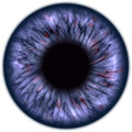 Eyeball closeup view blue isolated on white background Royalty Free Stock Photos