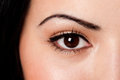 Eyebrow and eye Royalty Free Stock Photo