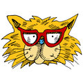 Eyeglasses cat face an image of a wearing Royalty Free Stock Photo