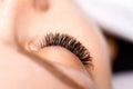 Eyelash Extension Procedure. Woman Eye with Long Eyelashes. Lashes, close up, macro, selective focus. Royalty Free Stock Photo