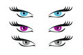 Eyes Illustration