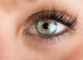 Eyes and long eyelashes detail of of the girl with Royalty Free Stock Photography