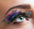 Eyes make up holiday makeup false eyelashes in the form of butterflies Stock Photos