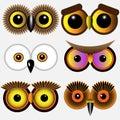 Eyes of owls Royalty Free Stock Photo