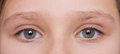 Eyes of a young girl Royalty Free Stock Photography