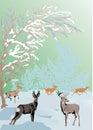Färgdeers landscape vinter Royaltyfri Bild