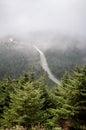 Förbise den dimmiga dalen och Balsam sörja Trees på Arkivbild