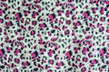 The fabric of motifs leopard on background Royalty Free Stock Images