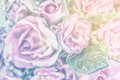Fabric Roses Royalty Free Stock Photo