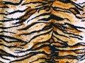 Fabric tiger Stock Photo