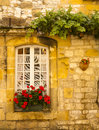 Facade with window and flowers Stock Images