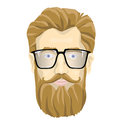 Face of a bearded man with glasses. Vector portrait illustration, isolated on white background.