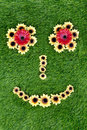 Face made of sunflowers on green grass Stock Image