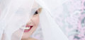 Face of the smiling bride Royalty Free Stock Photo