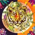 Face of tiger illustration