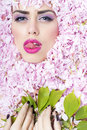 Face Of Woman In Flowers