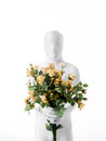 Faceless man with rose bouquet dressed white a of roses in hand Stock Images