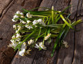 Fading snowdrops wooden background Stock Photo