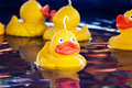 Fairground ducks Royalty Free Stock Photos