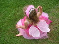 Fairy Foto de Stock Royalty Free
