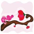 fairy bird drinking nectar Royalty Free Stock Photo