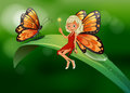 A fairy and a butterfly at the top of a long leaf illustration Stock Images