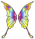 Fairy or butterfly wings isolated Royalty Free Stock Photo