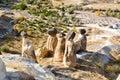 Fairy Chimneys. Cavusin. Cappadocia. Turkey Royalty Free Stock Photo