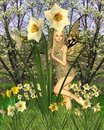 Fairy do Daffodil com fundo da mola Fotografia de Stock Royalty Free