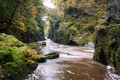 The fairy glen at betws y coed snowdonia wales Royalty Free Stock Photos