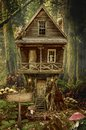 Fairy house stump series a fictional illustration of and the situation in the form of a collage of photos Royalty Free Stock Images