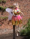 Fairy scarecrow a brightly coloured in a garden Royalty Free Stock Image