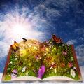 Fairy tale. Royalty Free Stock Photo