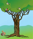 Fairy-tale rooted oak tree, squirrel and birds